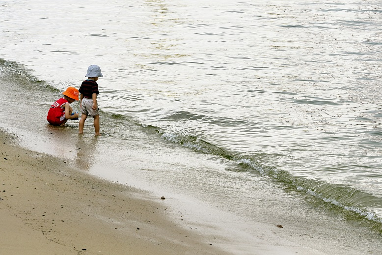 Sembawang Park has one of the few remaining natural beaches in Singapore